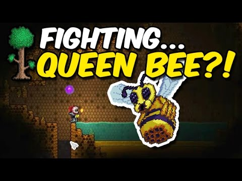 Terraria: KILLING... Queen Bee?!