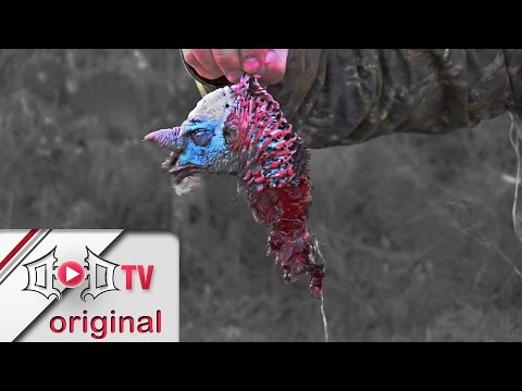 Texas Turkey Suffers Some Serious Winchester Brain Damage!