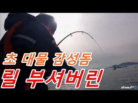 릴 부셔버린 대물 감성돔 낚시 히팅 초대박 �