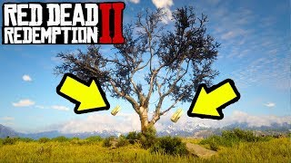 SECRET MONEY TREE THAT GROWS GOLD in Red Dead Redemption 2! RDR2 Easy Money & Fast Money!