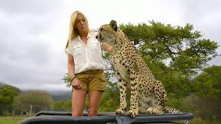 Lina Lindorff möter världen kanske gosigaste gepard