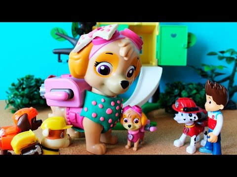 Skye of the Paw Patrol knows his mother