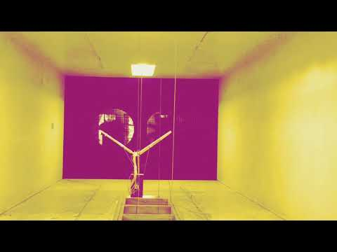 Flapping Wing - Wind Tunnel Experiment