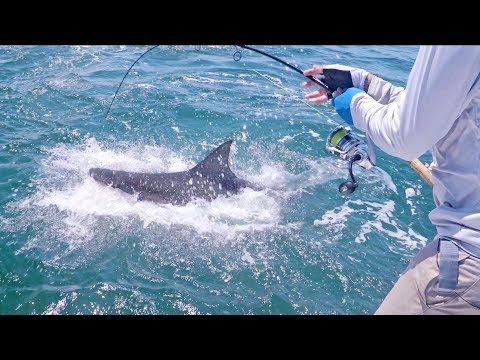 The Tackle Down Fishing Challenge - 4K