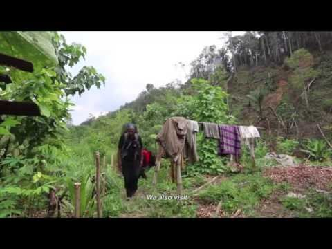 Documentary: Aceh - Conserving Leuser Forest for the World