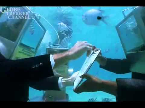 Ian Wright's Under-Water Wedding in Mauritius - YouTube.mp4
