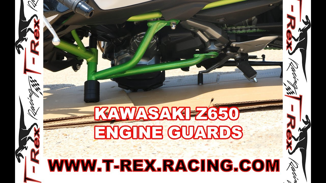 T-Rex Racing 2017-2019 Kawasaki Z650 Z 650 Engine Crash Guard
