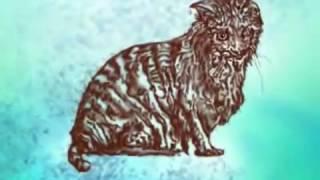 Притча про кота которого не любили люди