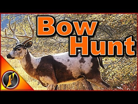 Bow Hunting | TheHunter Call Of The Wild 2018