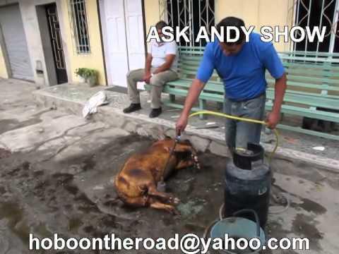 Pig Roast Ecuadorian Style