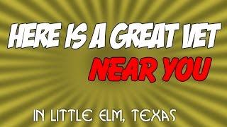 Vet Near Me Little Elm Texas