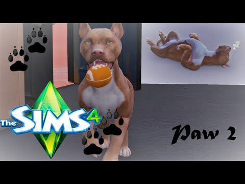 THE CHASE| JUST BUSINESS: An urban Cinderella series- THE SIMS 4 CATS & DOGS #2