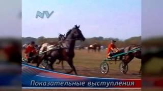 """Фильмы Владимира Носова - Скачки """"Возрождение"""""""