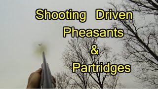 2015/01/03 - Game Shoot - Fantastic Day! - Shooting Driven Pheasants & Partridges.