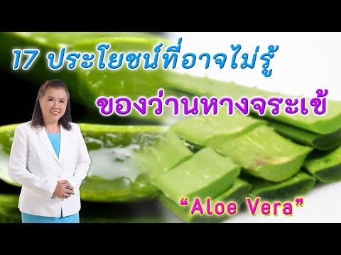 รีบหามาใช้ !! 17 ประโยชน์ที่อาจยังไม่รู้ ของว่านหางจระเข้ | Aloe Vera | พี่ปลา Healthy Fish