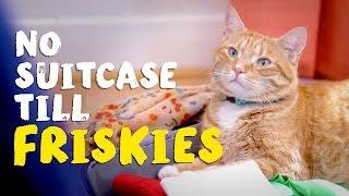 No Suitcase Till Friskies®
