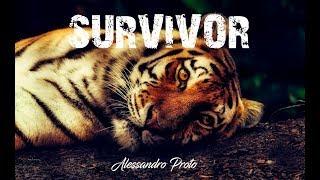 Survivor - Alessandro Proto (Original Music)