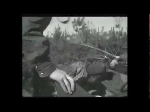 Bitwa o Berlin 1945