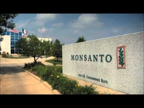GMO OMG video