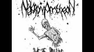 Nekromantheon - we are rotting