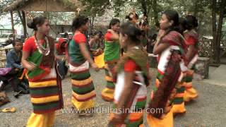 Dimasa-Kachari women dancers performing