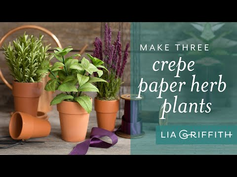 DIY Crepe Paper Herb Plants