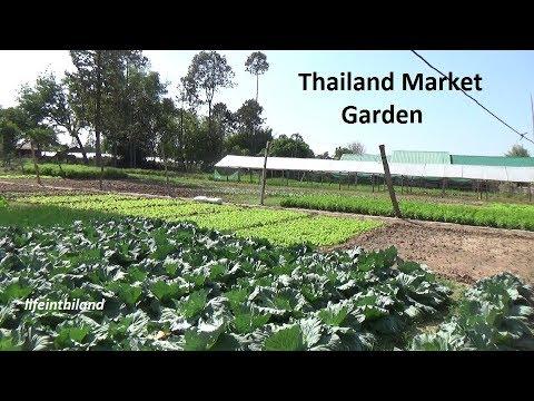 Thailand Market Garden Tour.