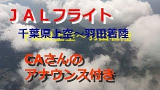 JAL日本航空のフライトです。 晴天のフライトで、千葉県上空から神奈川...