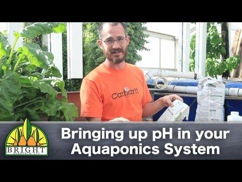 Bringing up pH in Aquaponics systems
