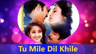 Tu Mile Dil Khile - Kumar Sanu Hit Song    Criminal - Valentine's Day Song