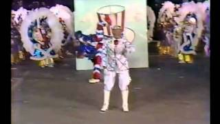 1985 Hegeman String Band - Stand up & Cheer, America