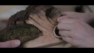 DAZ 3D уроки - применение в ювелирном деле