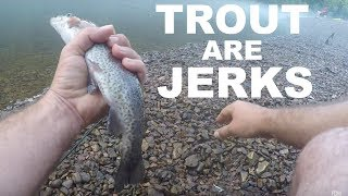 Trout Fishing on the White River in Arkansas