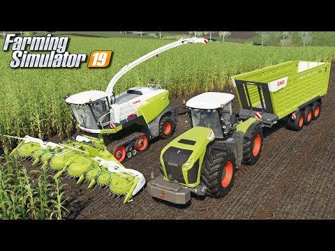 Kukurydza na kiszonkę - Farming Simulator 19 | #118