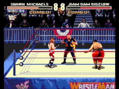 Sega Genesis Wrestling Games