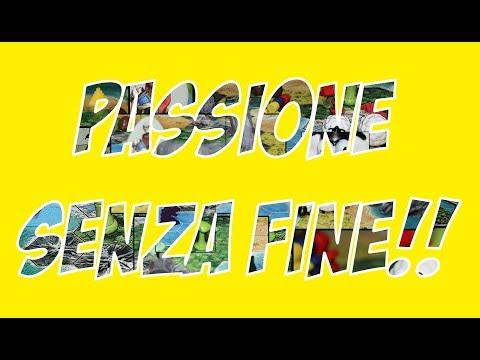 """""""The Rolling Games"""" PASSIONE SENZA FINE!!"""