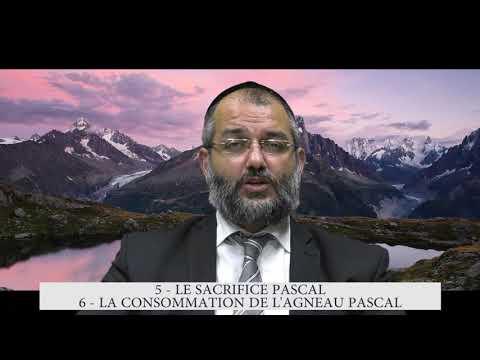 613 Mitsvot - 5eme et 6eme Commandement DE LA TORAH - Sacrifier et consommer l'agneau Pascal