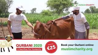 QURBANI 2020 | MuslimCharity.org |  €25 QURBANI EU | SHARE HAPPINESS | ORDER NOW | | UDHIYA