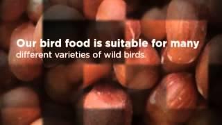 Wild Bird Seed Suppliers