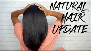 2 YEAR NATURAL HAIR UPDATE!! + PRODUCTS!