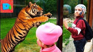 ДИКИЕ ЖИВОТНЫЕ РАЗГОВАРИВАЮТ С НАМИ!!! Funny video in zoo on DIDIKA TV Funny Baby Kids Children