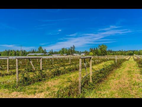 Beautiful Vancouver Island Farm in Courtenay BC
