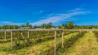 Beautiful Vancouver Island Farm in Courtenay BC