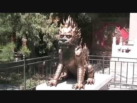 Viaggio in Cina - Trip to China