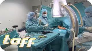 Ärzte am Limit: Der harte Job in der Notaufnahme | taff | ProSieben