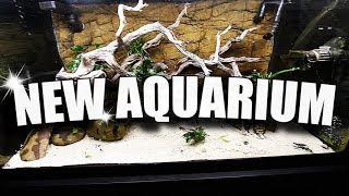 NEW AQUARIUM SCAPE!!