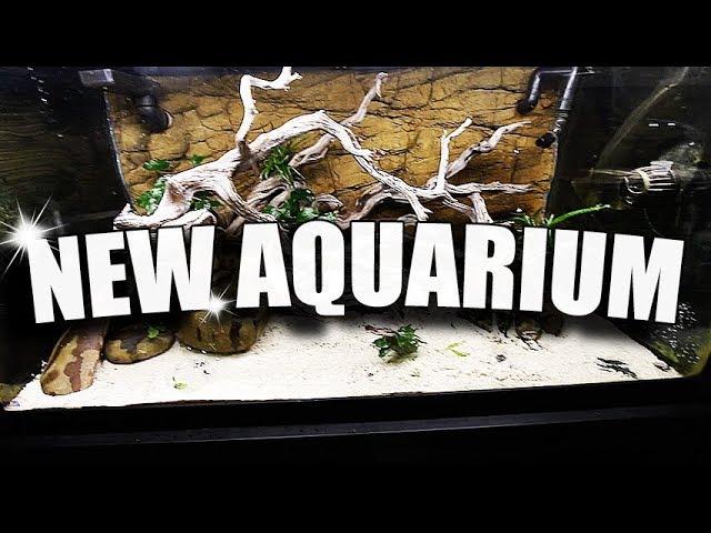 NEW AQUARIUM SCAPE!!