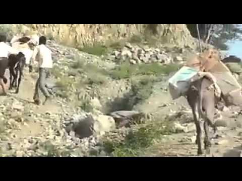 فيديو: هكذا يتم إدخال الأدوية الى تعز في ظل الحصار