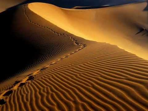 Sahara Journey - By Brian Horton