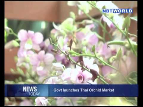 Government Launches Thai Orchid Market